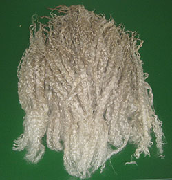 Pure Teeswater Wool Separated & Selected Locks